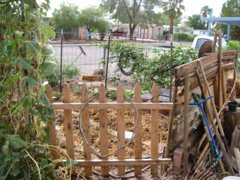 2002 Fall Garden, the start