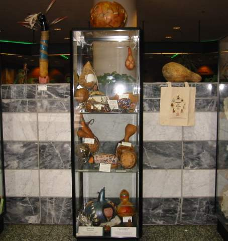 Central display Case
