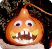 gourd pumpkin