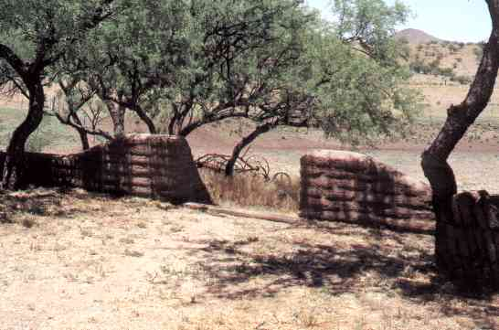Adobe walls cradle a shady area ajacent to the main house